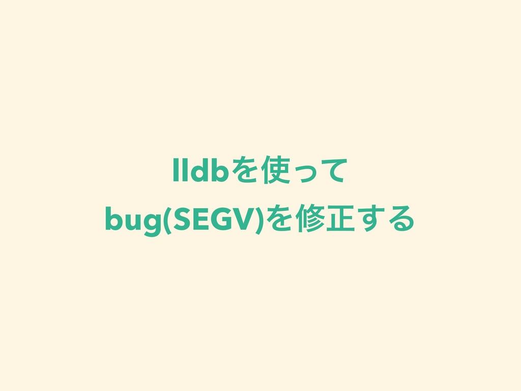 lldbΛͬͯ bug(SEGV)Λमਖ਼͢Δ