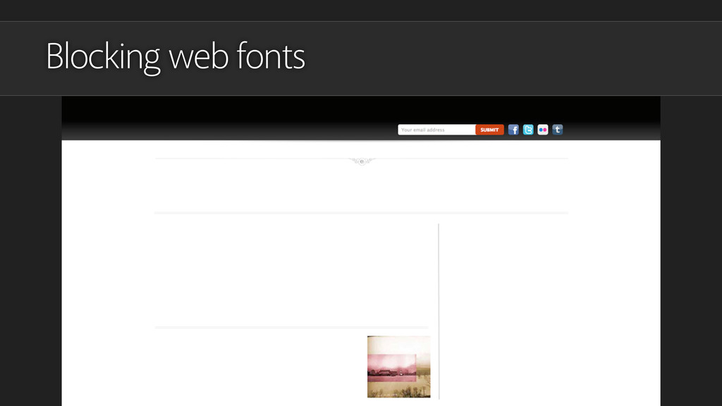 Blocking web fonts