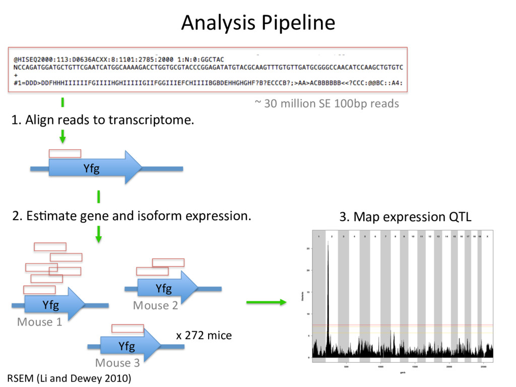 Analysis Pipeline ~ 30 million SE 100bp reads Y...