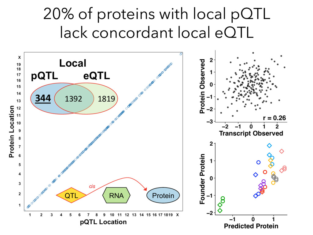20% of proteins with local pQTL lack concordant...