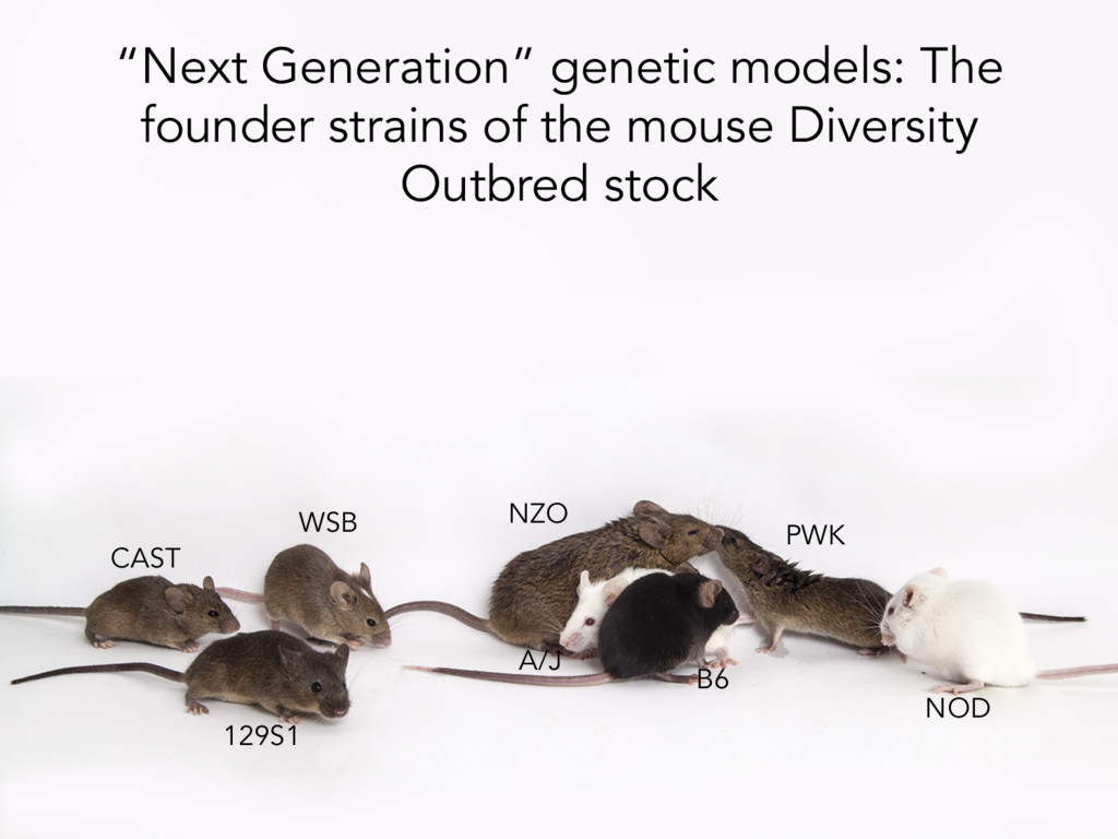 """Next Generation"" genetic models: The founder s..."