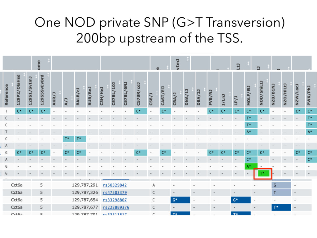 One NOD private SNP (G>T Transversion) 200bp up...