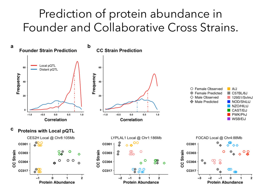 Prediction of protein abundance in Founder and ...