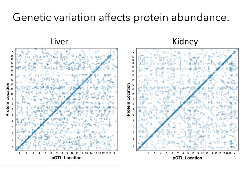 Genetic variation affects protein abundance. Li...