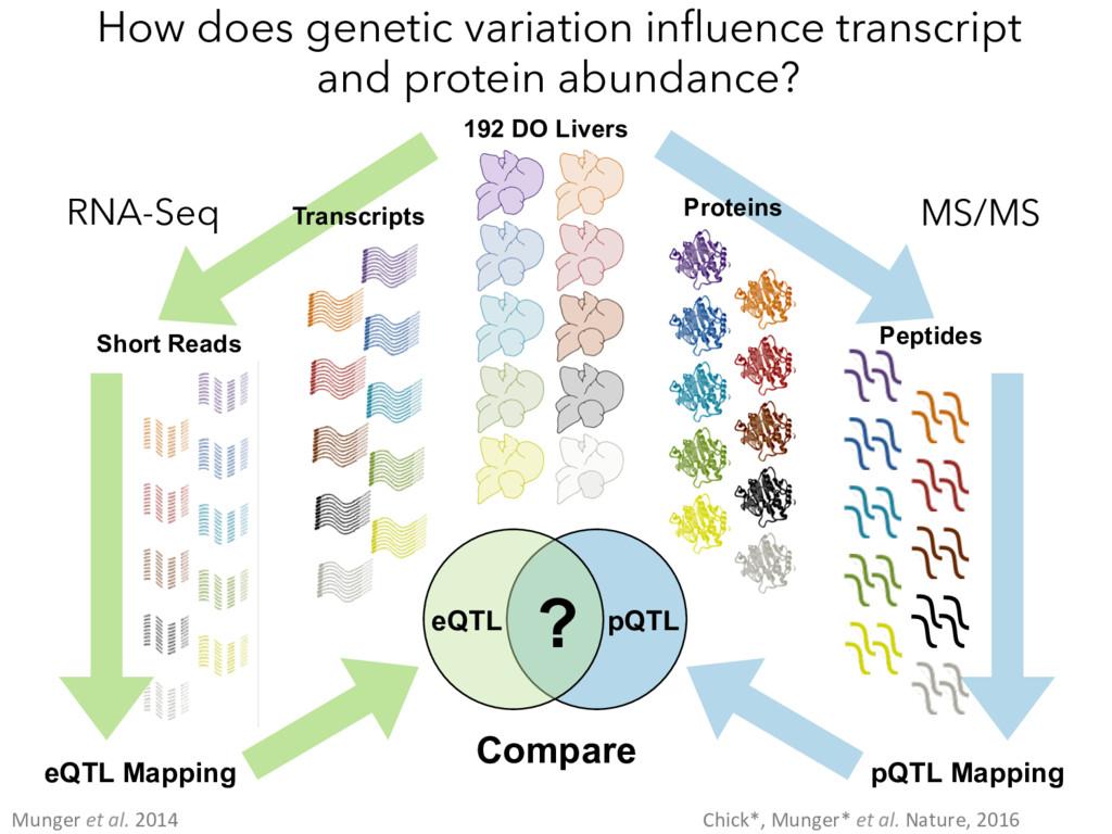 192 DO Livers Transcripts Short Reads RNA-Seq e...