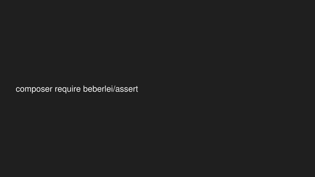 composer require beberlei/assert