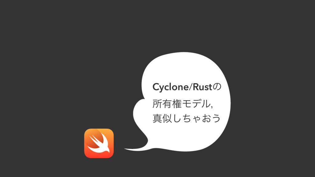 Cyclone/Rustͷ ॴ༗ݖϞσϧɼ ਅͪ͠Ό͓͏