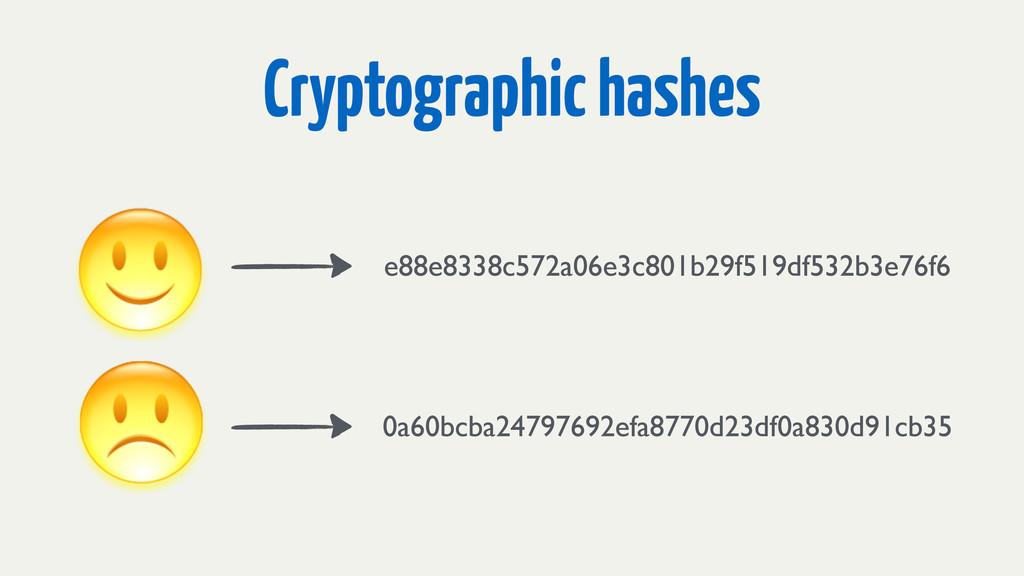 Cryptographic hashes e88e8338c572a06e3c801b29f5...