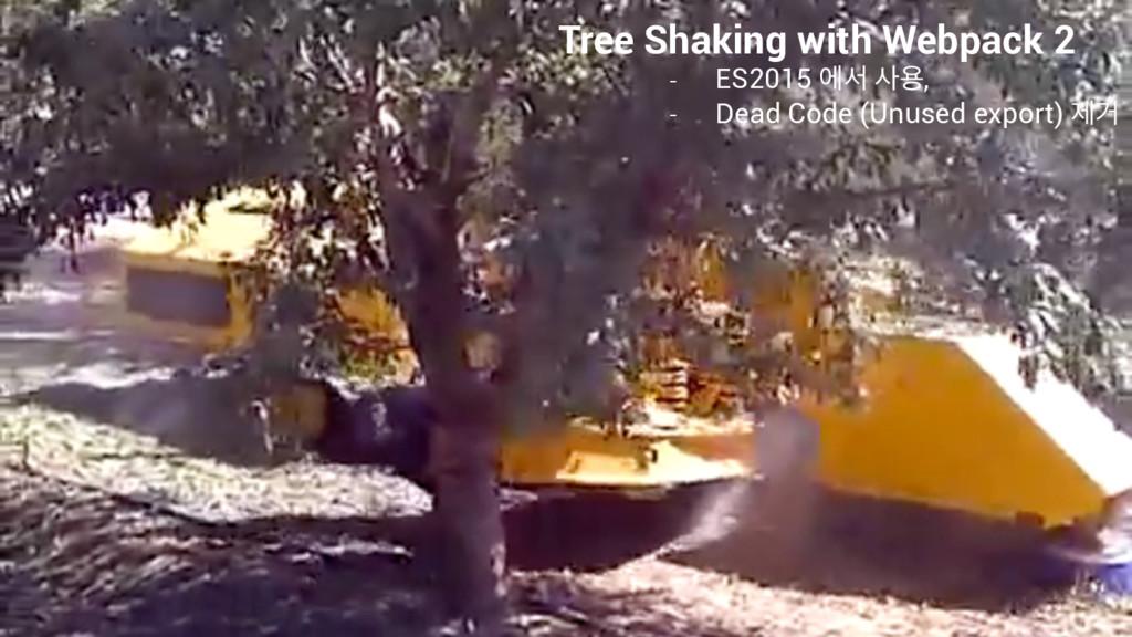 Tree Shaking with Webpack 2 - ES2015 ীࢲ ਊ, - D...