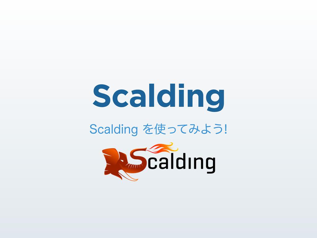 Scalding 4DBMEJOHΛͬͯΈΑ͏