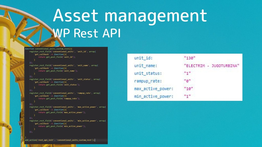 Asset management WP Rest API