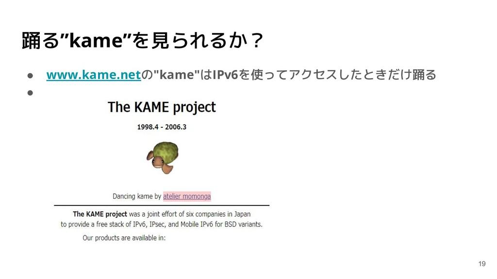 """踊る""""kame""""を見られるか? ● www.kame.netの""""kame""""はIPv6を使ってア..."""