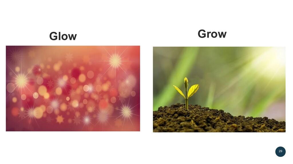 Glow 29 Grow