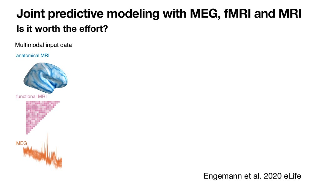 Joint predictive modeling with MEG, fMRI and MR...