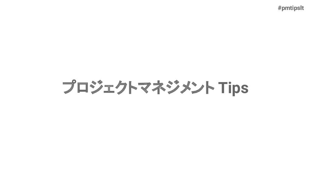 #pmtipslt プロジェクトマネジメント Tips