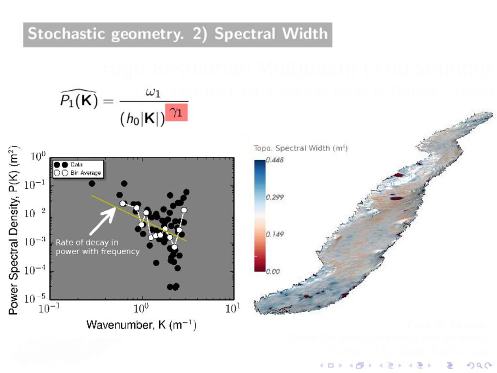 Stochastic geometry. 2) Spectral Width P1 (K) =...