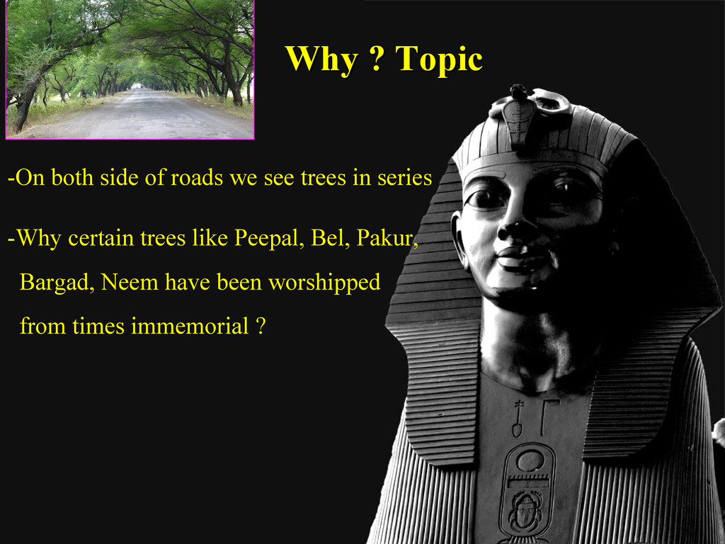 Why ? Topic Why ? Topic -On both side of roads ...