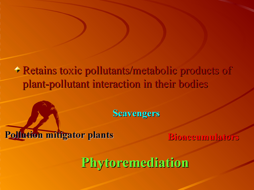 Retains toxic pollutants/metabolic products of ...
