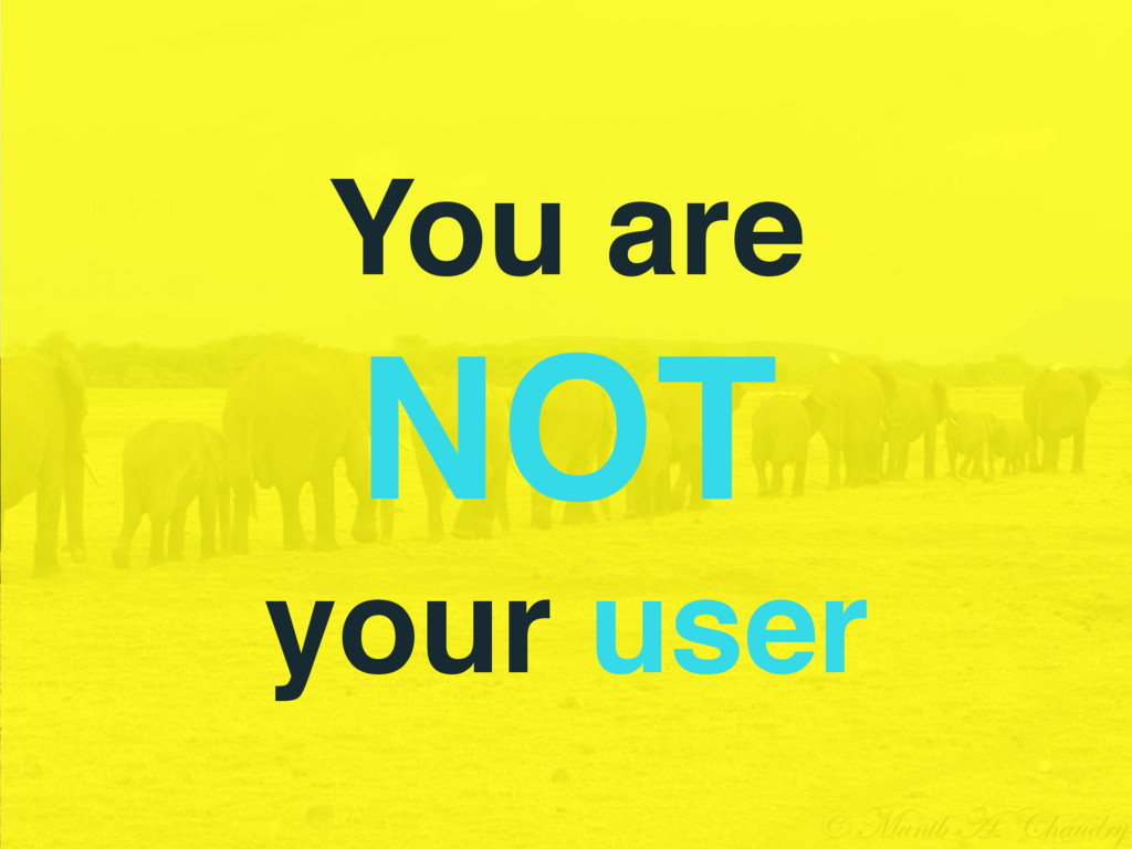 You are NOT your user