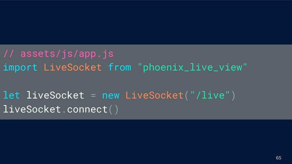 """65 // assets/js/app.js import LiveSocket from """"..."""