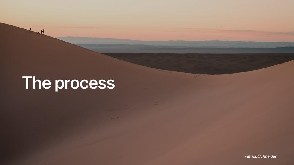 The process Patrick Schneider