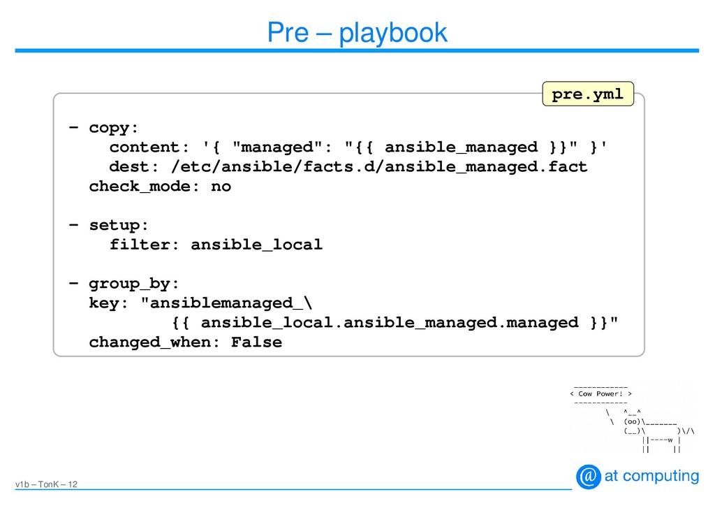 v1b – TonK – 12 Pre – playbook - copy: content:...