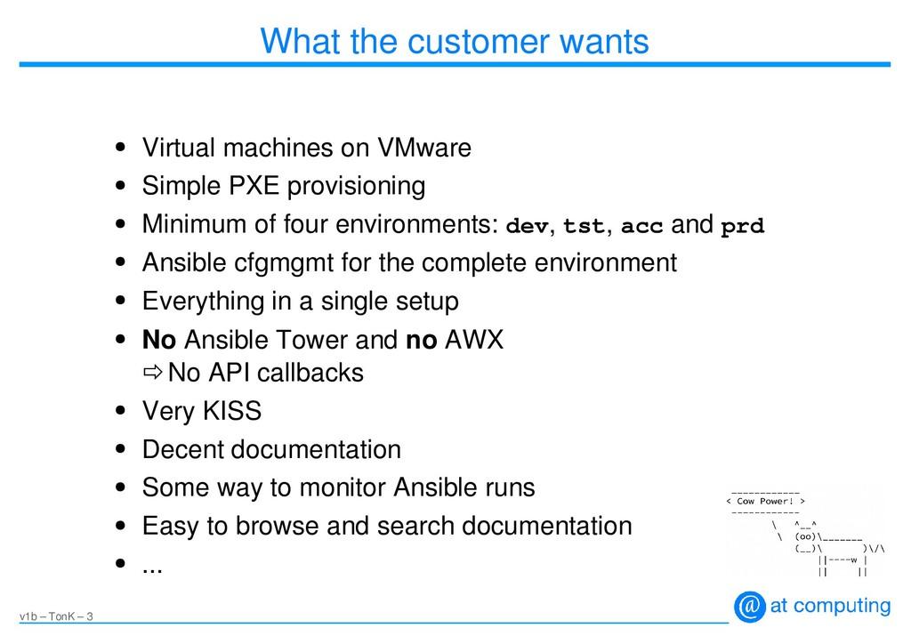 v1b – TonK – 3 What the customer wants ● Virtua...