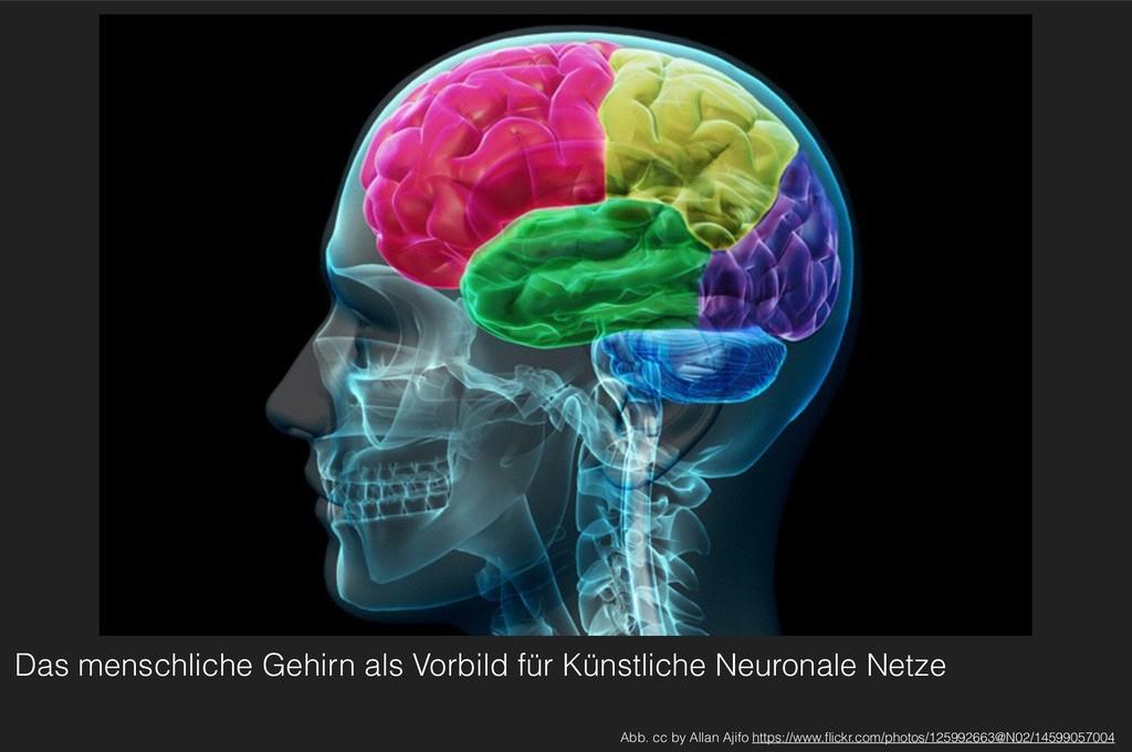 Das menschliche Gehirn als Vorbild für Künstlic...