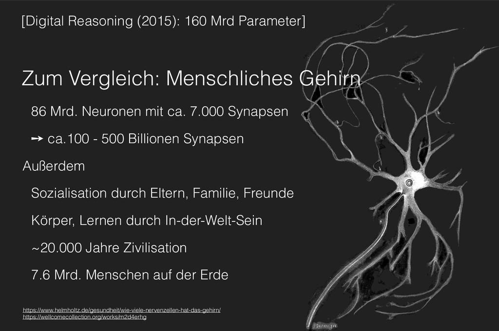 Zum Vergleich: Menschliches Gehirn 86 Mrd. Neur...