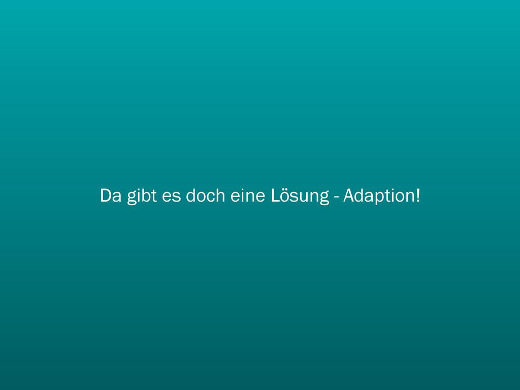Da gibt es doch eine Lösung - Adaption!