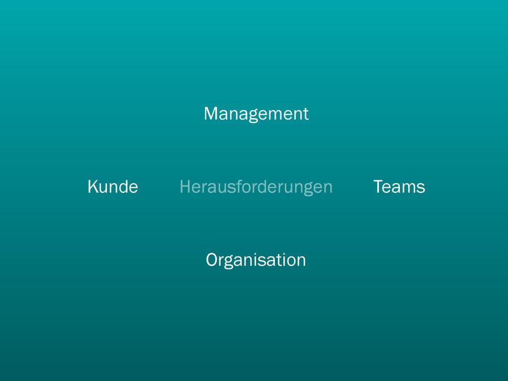 Herausforderungen Teams Management Kunde Organi...