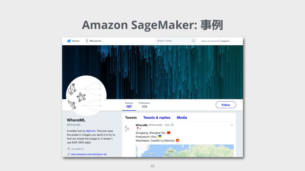 Amazon SageMaker: 事例 45