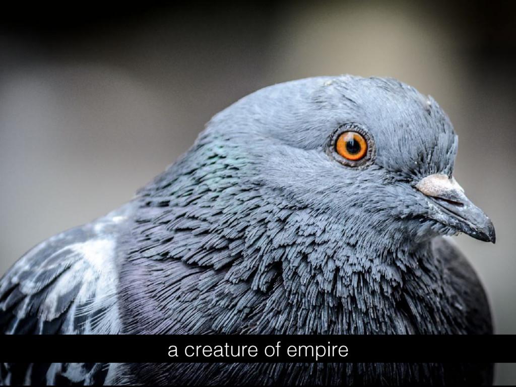 a creature of empire