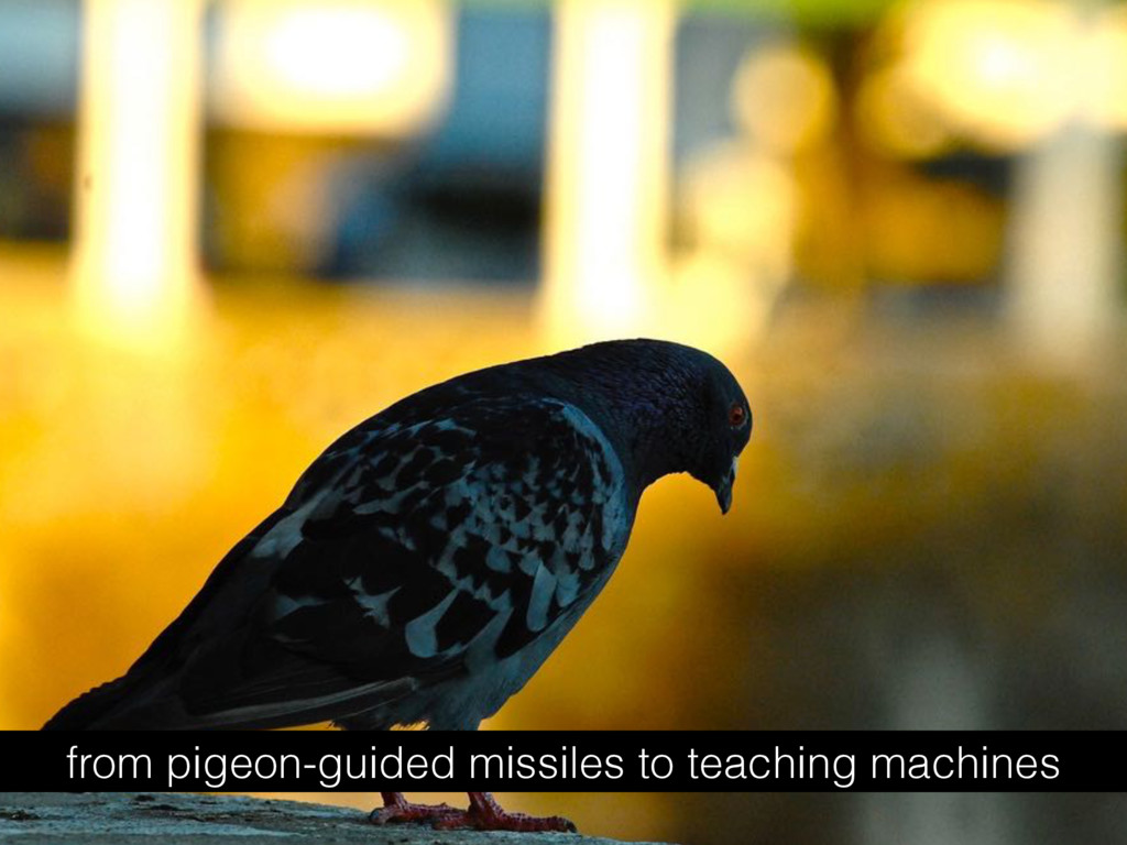 from pigeon-guided missiles to teaching machines
