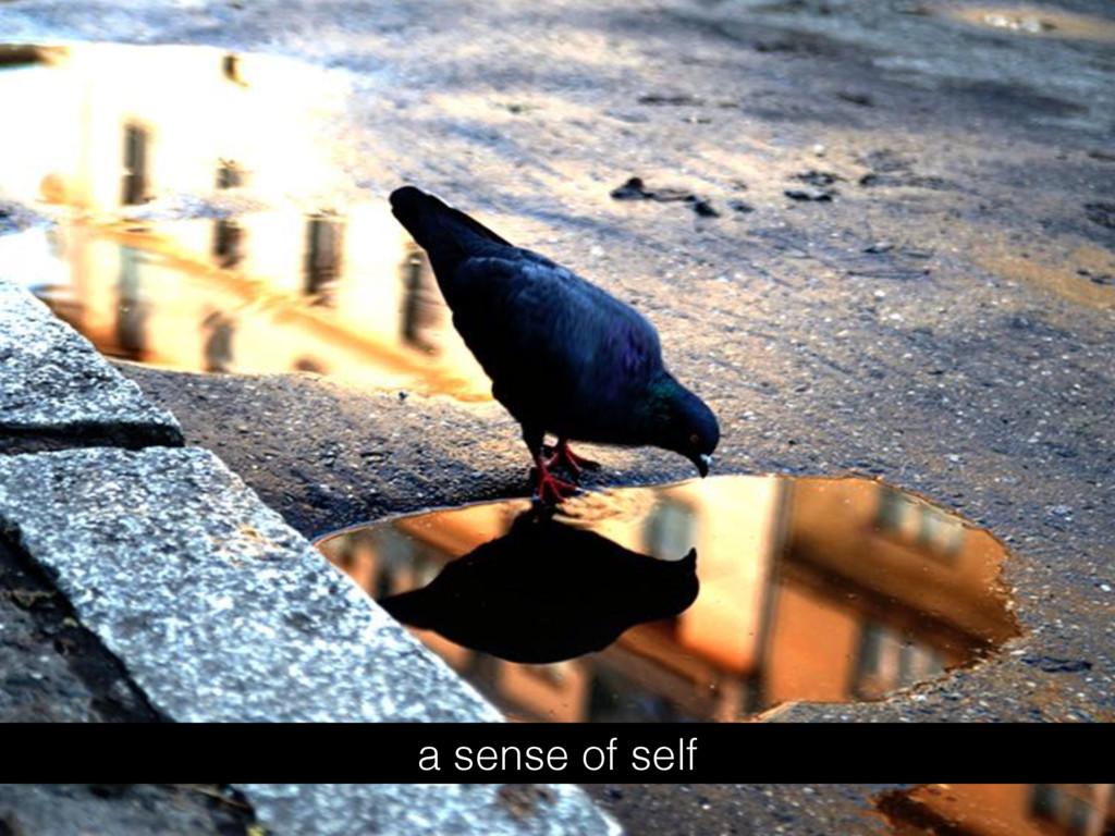 a sense of self