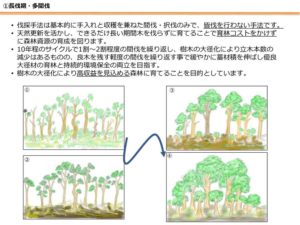 ①長伐期・多間伐 • 伐採手法は基本的に手入れと収穫を兼ねた間伐・択伐のみで、皆伐を行わない手...