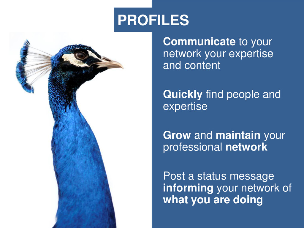 Communicate to your network your expertise and ...
