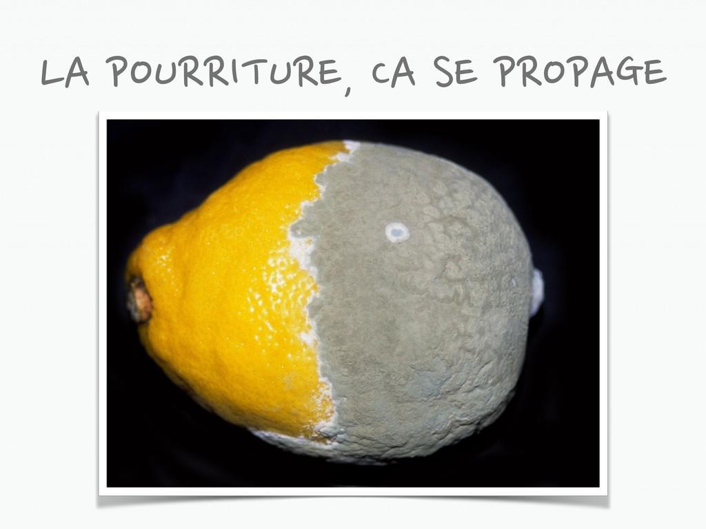 LA POURRITURE, CA SE PROPAGE