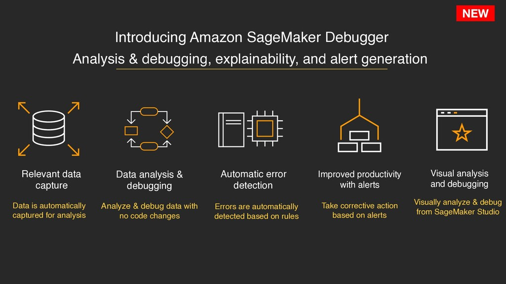 NEW Introducing Amazon SageMaker Debugger Data ...