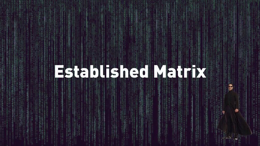 Established Matrix