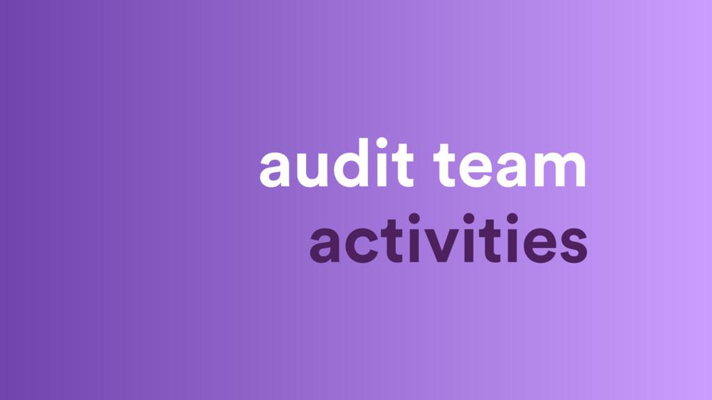 audit team activities