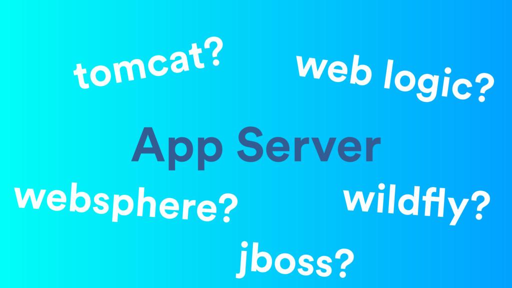 App Server websphere? web logic? tomcat? wildfl...
