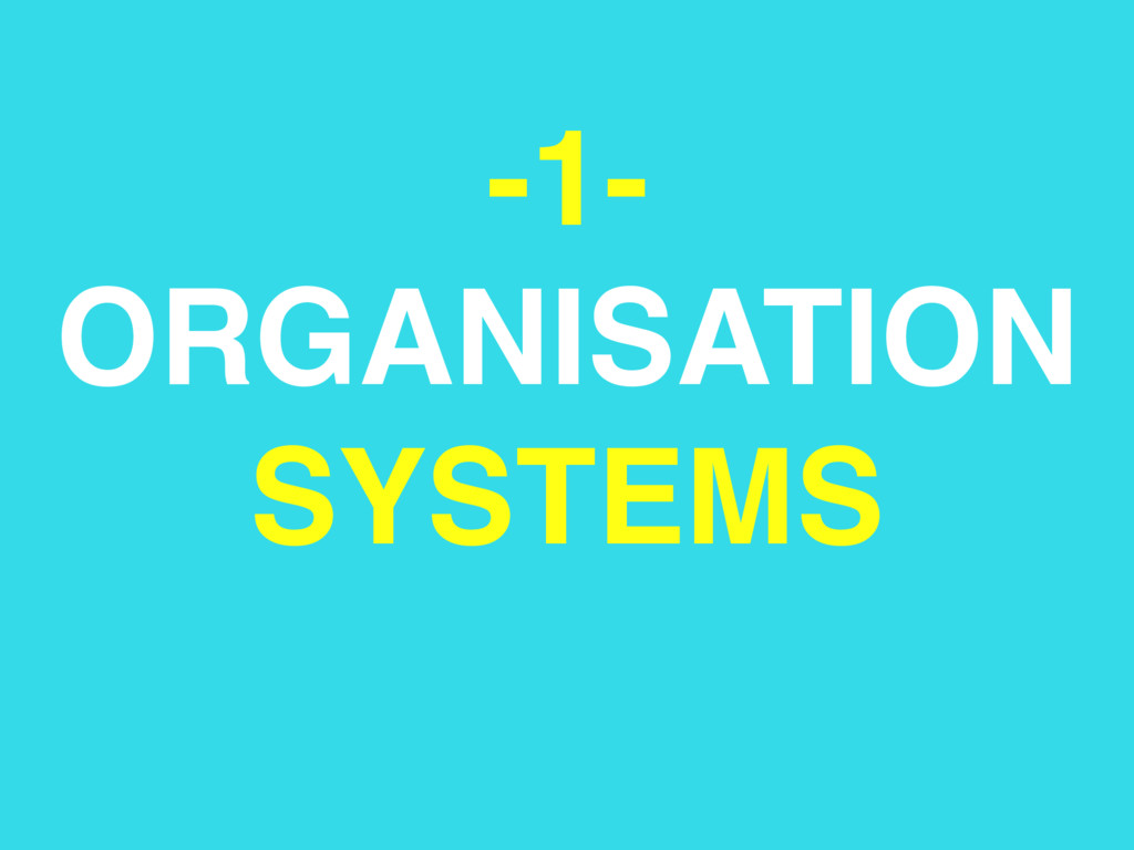 -1- ORGANISATION SYSTEMS