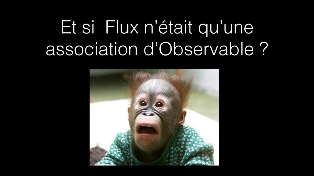 Et si Flux n'était qu'une association d'Observa...