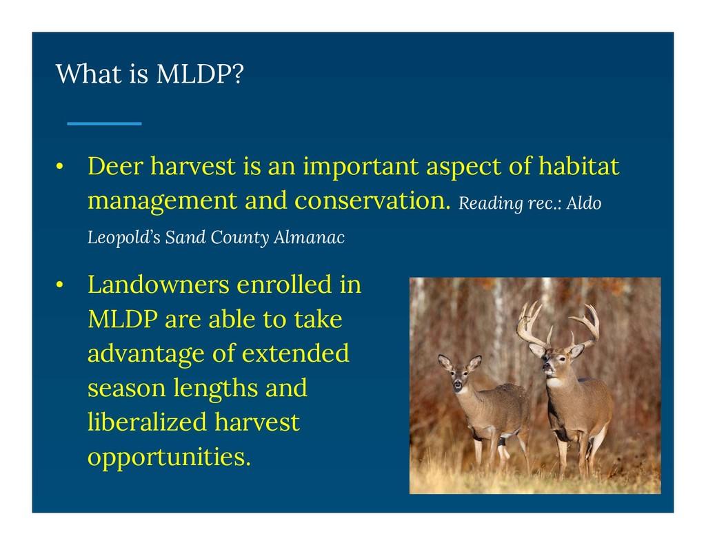 What is MLDP? • Deer harvest is an important as...