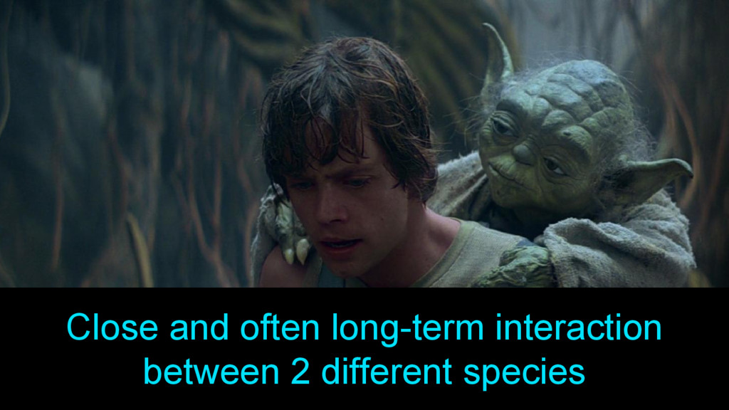 Close and often long-term interaction between 2...