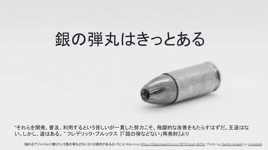 銀の弾丸はきっとある 悩めるアジャイルに贈りたい『銀の弾などない』には続きがあるということ #...