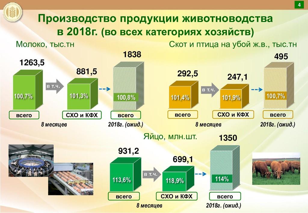 Производство продукции животноводства в 2018г. ...