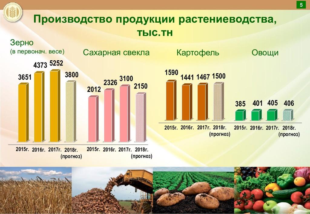 Производство продукции растениеводства, тыс.тн ...