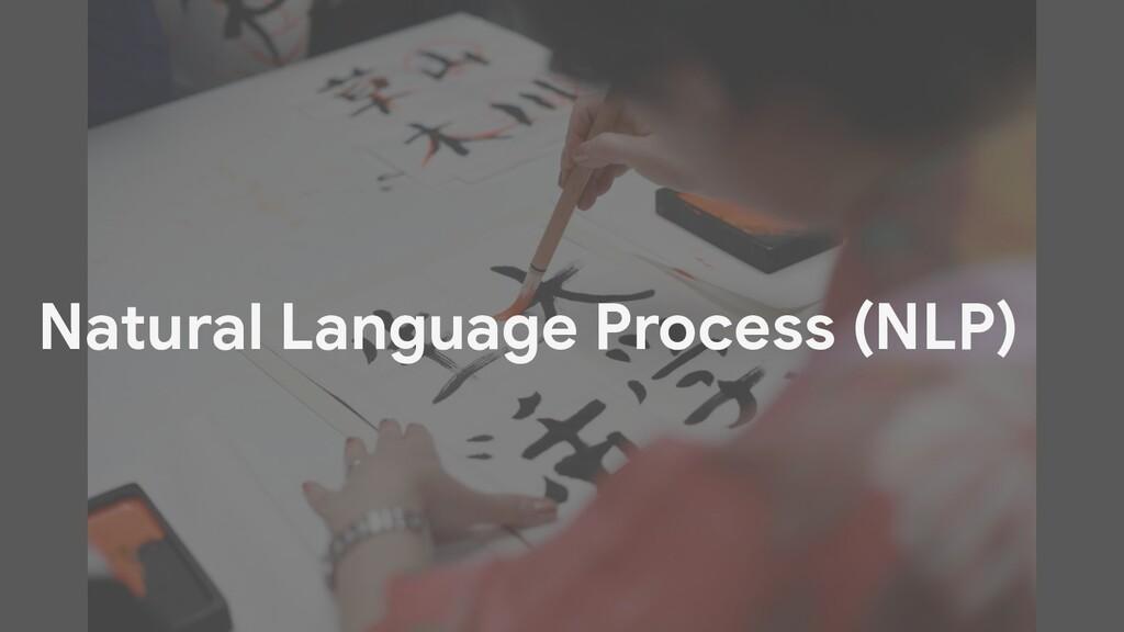 Natural Language Process (NLP)